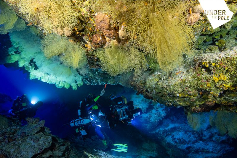DeepHope : first assessment by Ghislain Bardout ı Under The Pole